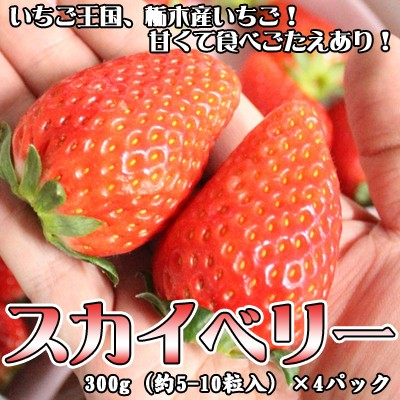 いちご イチゴ スカイベリー 300g(約5-10粒入)...