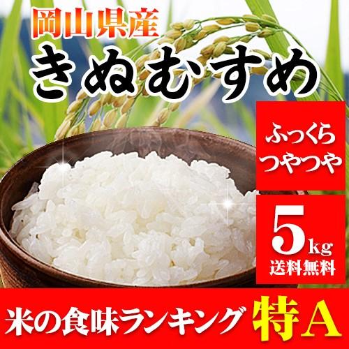 米 お米 29年産 岡山県産きぬむすめ5kg  送...
