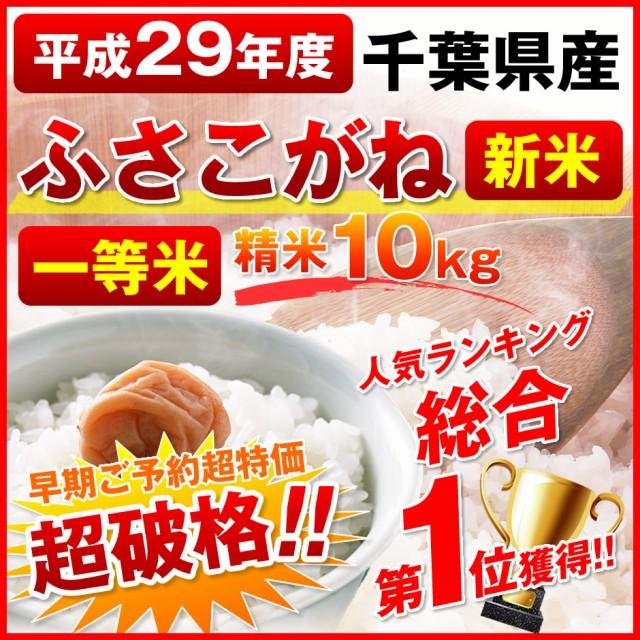 【送料無料】29年度千葉県産◆ふさこがね◆10kg 精米 新米 一等米  在庫限り<同梱不可><単独発送>お届けまでお時間頂きます。