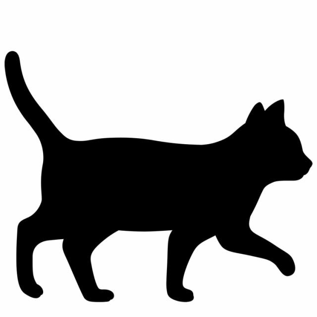 【静かにたたずんでいる】 間接照明 黒ネコ ウォ...