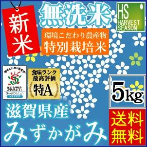 ★新米29年産★【送料無料】 無洗米特別栽培米滋...