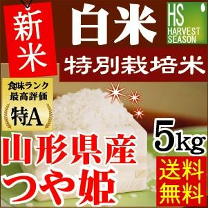 ★新米29年産★【送料無料】白米 特別栽培米 山形...