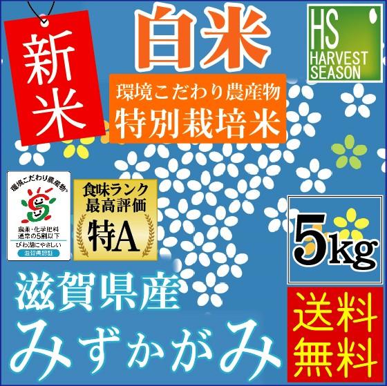 ★新米29年産★【送料無料】 白米特別栽培米滋賀...