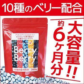 ★メール便送料無料☆大容量!高品質10種ベリーエ...