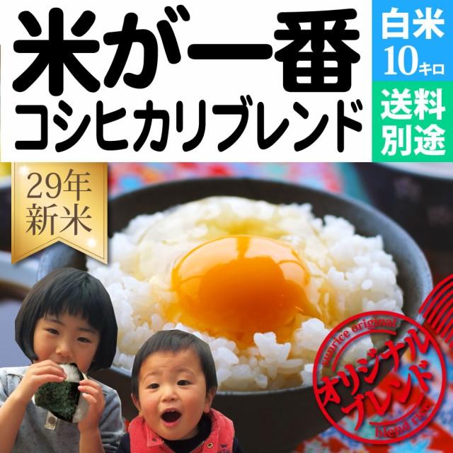 米10kg コシヒカリブレンド「米が一番」送料別途 ...