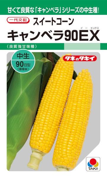 タキイ種苗 スイートコーン キャンベラ90EX ...