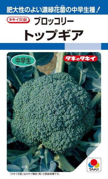 タキイ種苗 ブロッコリー トップギア 1.3ml