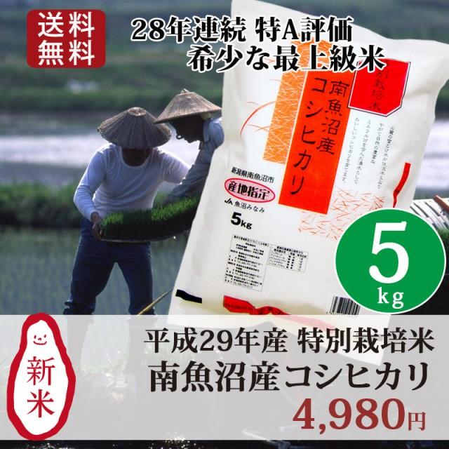 新米 米 お米 5kg 特別栽培米 新潟 南魚沼産コシ...