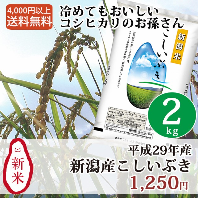 米 お米 2kg 新潟 新潟産こしいぶき 29年産 コシ...