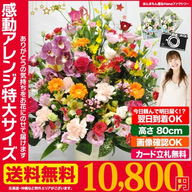 即日発送 正午まで★ 誕生日 記念日 お祝い 花 ギ...