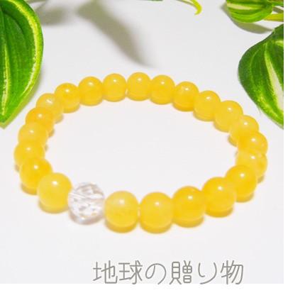 送料無料◆24種ぜ〜んぶ2980円【イエローアラゴナ...