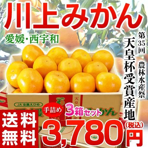 《送料無料》【天皇杯受賞産地】愛媛・西宇和「川...
