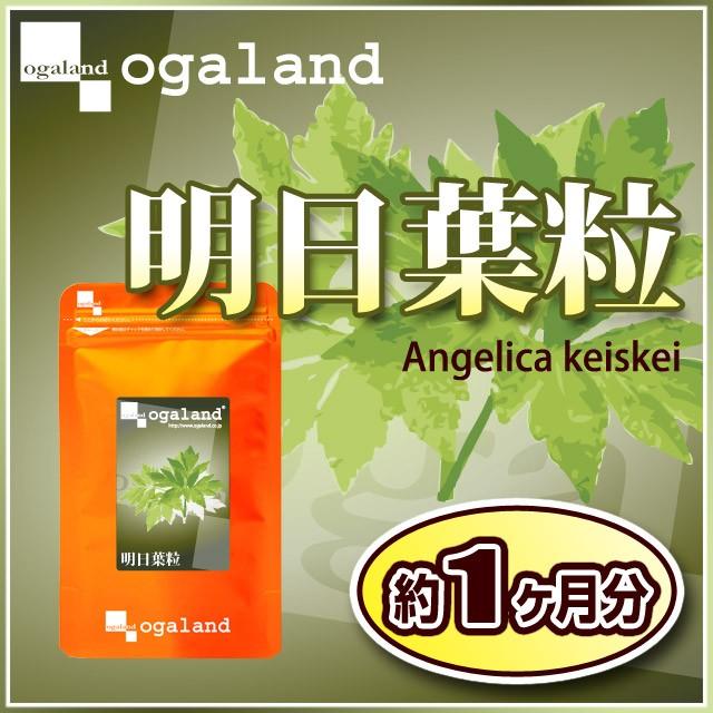 明日葉粒(約1ヶ月分)3150円以上送料無料 明日葉茶...