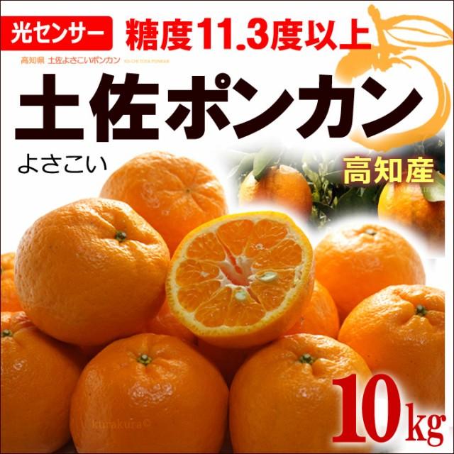 土佐よさこいポンカン 秀(約10kg)高知産 糖度セン...