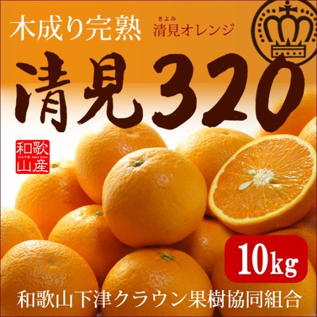木成り完熟清見オレンジ 清見320(約10kg)和歌山産...