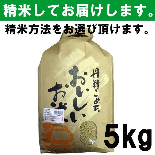 【平成29年度産】北海道産 ななつぼし 一等玄米...