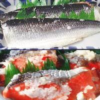にしん飯寿司1kg いずし 北海道 名産 にしん