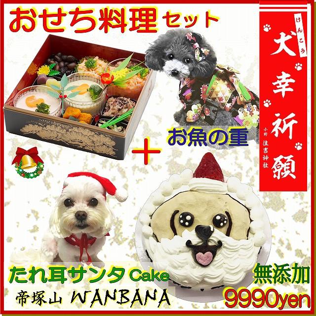 犬用 クリスマス ケーキ たれ耳わんわん サンタ 4...