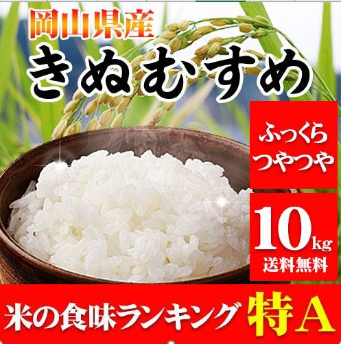 29年産 岡山県産きぬむすめ10kg【5kg×2袋】 送料無料 北海道・沖縄は700円の送料がかかります。 お米 米