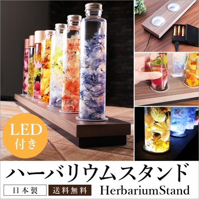 【ハーバリウム スタンド 70cm LED照明付き 化粧...