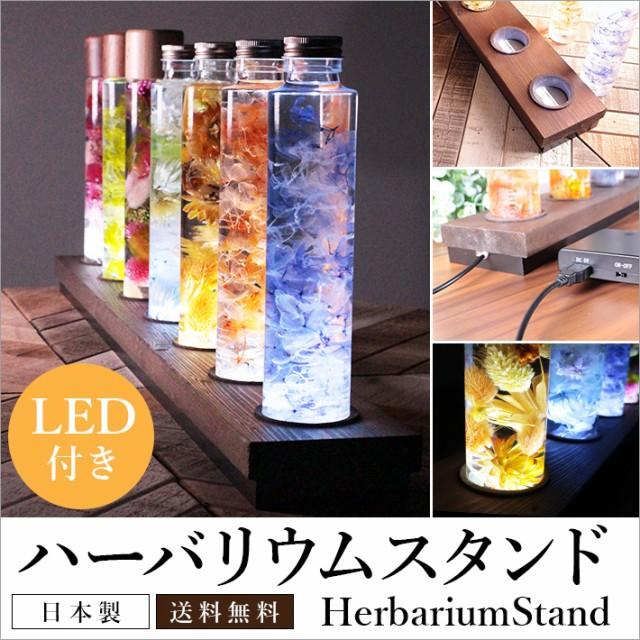【ハーバリウムスタンド 70cm LED照明付き 天然木...