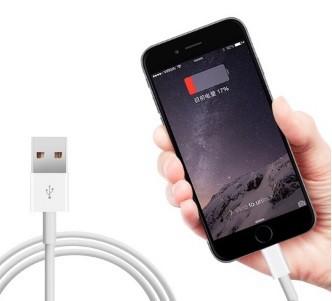 [大口:5個よりお承り][送料無料]iphone5s iphone...