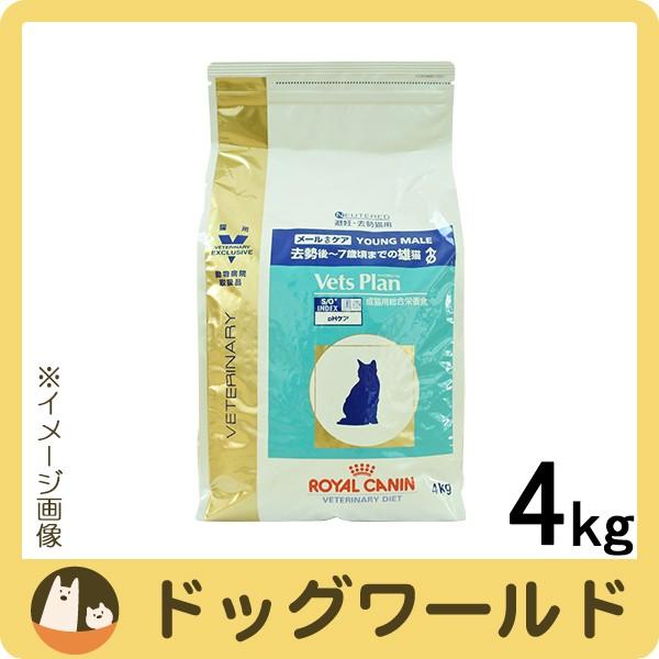 ロイヤルカナン ベッツプラン 猫用 メールケア 4k...