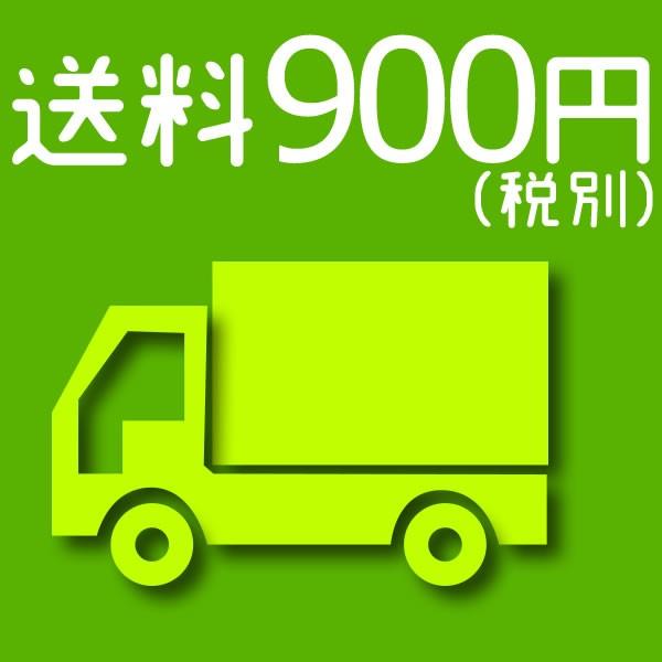 送料 900円(税別)
