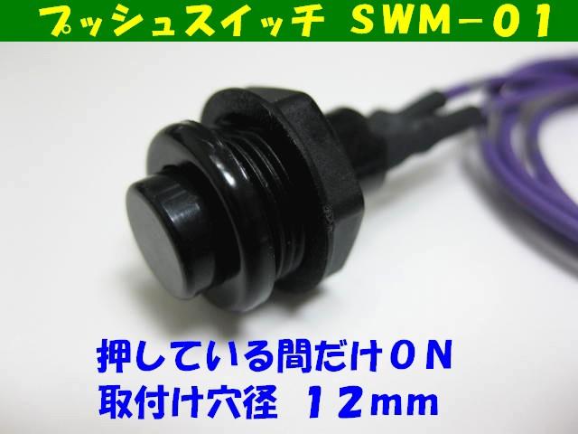 オプションスイッチ SWM−01