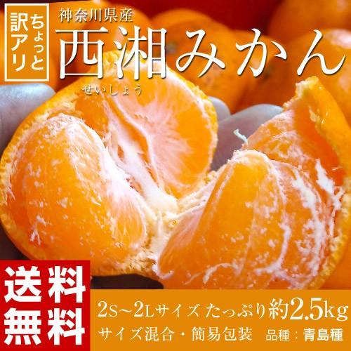 ≪送料無料≫神奈川県産 「サイズ混合・西湘みか...