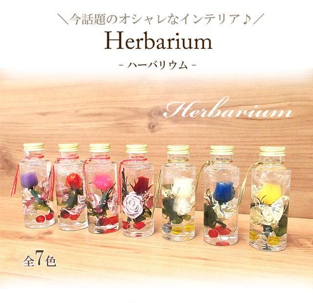 【選べる7タイプ】ハーバリウム Herbarium スリム...