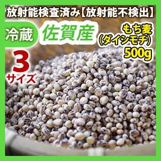 佐賀産 もち麦 500g 同梱サイズ5【国産 ダイエッ...