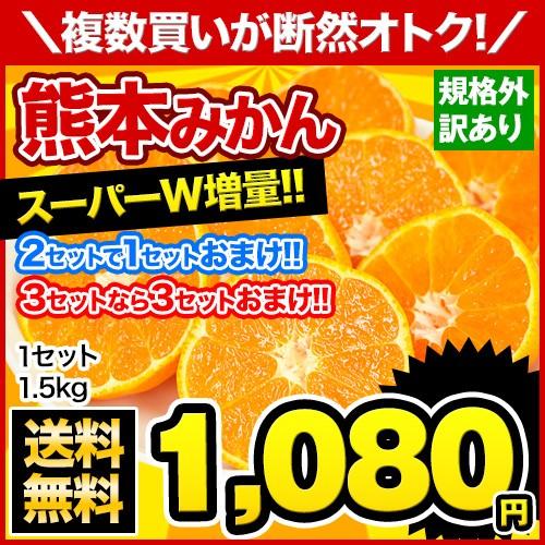 ★1箱から送料無料★熊本みかん 1.5kg 【規格外...