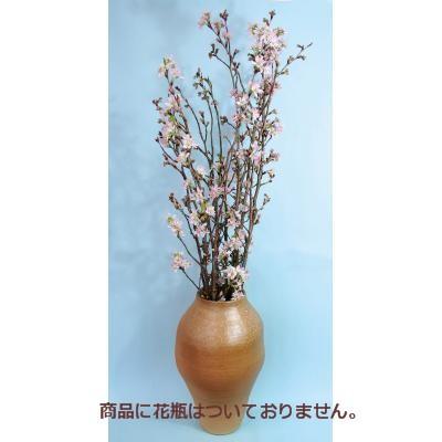 生花桜特集  山形 「啓翁桜(けいおうざくら)1...
