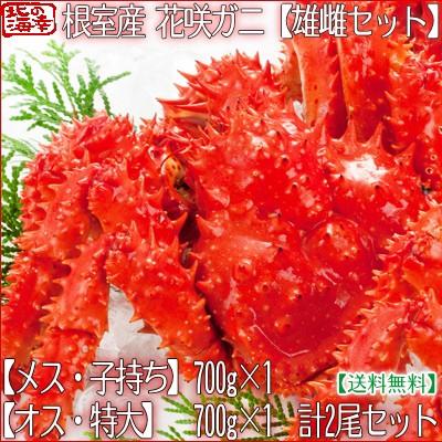 【送料無料 北海道産】北海道 根室産 花咲ガニ 【...