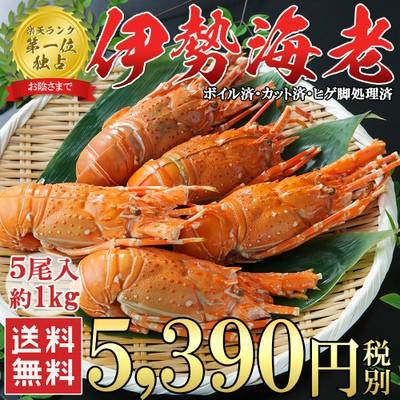 【楽天ランキング1位】送料無料【伊勢海老 5尾 約...