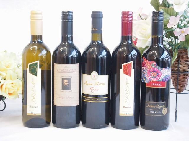 イタリア赤白ワイン5本セット ミケランジェロ・ブ...