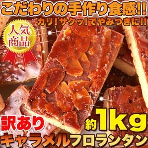 こだわりの手作り食感!!リニューアル☆【訳あり】...