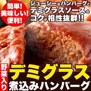 【送料無料】【ゆうメール出荷】野菜入りデミグラ...
