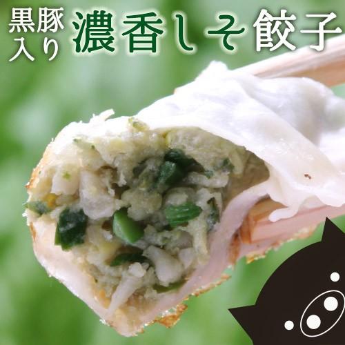 鹿児島県産 黒豚入り 濃香 しそ餃子 54個(18個入...