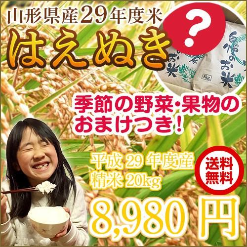 【送料無料】山形県産29年度米「はえぬき」20kg ...