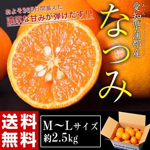 ≪送料無料≫柑橘 愛知・蒲郡産 『なつみ(南津海...