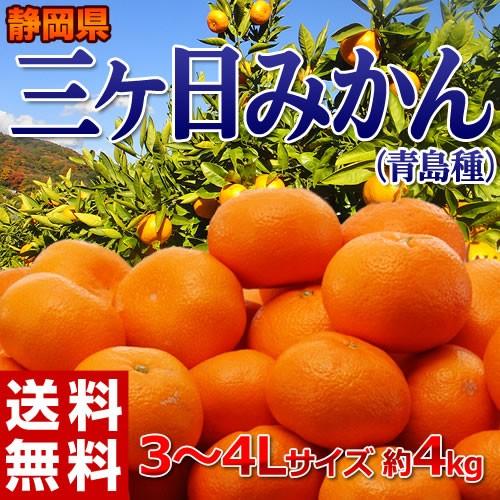 《送料無料》静岡産 三ヶ日みかん(青島種)3〜4...