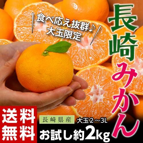 《送料無料》長崎県産 大玉みかん 2〜3L 約2kg...