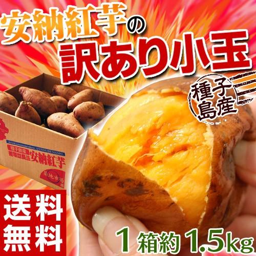 《送料無料》種子島産 「安納紅芋」 小玉 約1.5...