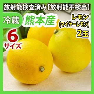 [最終発送日:3月末予定]九州産 レモン(マイヤー...