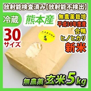 [新米]【玄米】熊本産平成30年度産 無農薬 玄米 ...