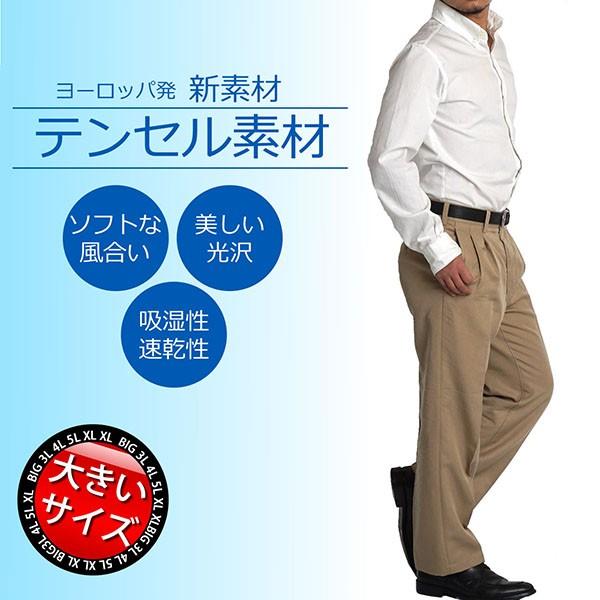 【送料無料 ネコポス】大きいサイズ メンズ スラ...