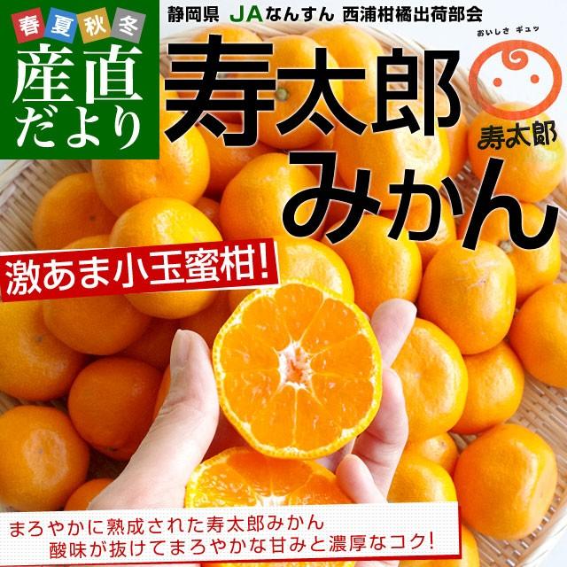 送料無料 静岡県産 JAなんすん 西浦柑橘出荷部会 寿太郎みかん 2Sサイズ 小玉2.5キロ(40から50玉前後)市場スポット