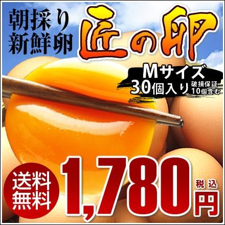 【送料無料】朝採り新鮮卵『匠の卵』Mサイズ30個入り(破損保証10個含む)※同梱不可商品※